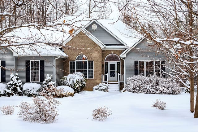 winter relocation